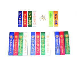 Sports Day Ribbons/Stickers