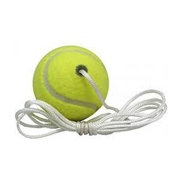 Totem Tennis Ball & Cord Only