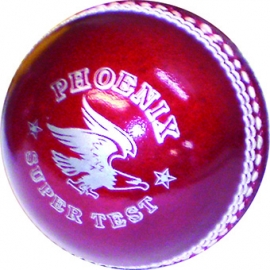 IDM Test Choice 2pce Cricket Ball