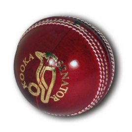 Kookaburra Senator Cricket Ball